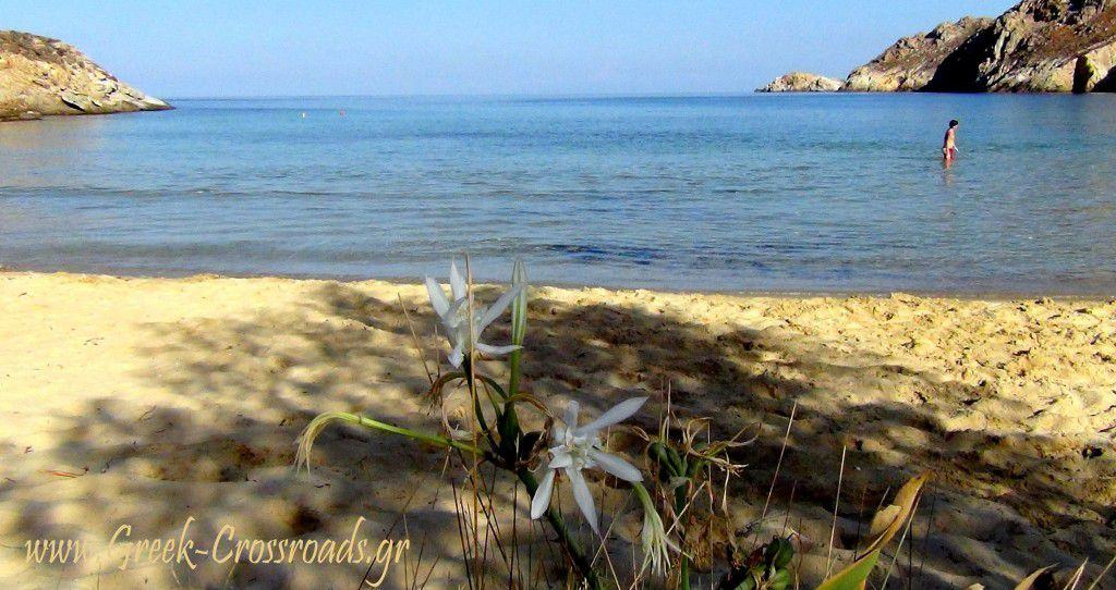 Σέριφος παραλίες Αη Σώστης