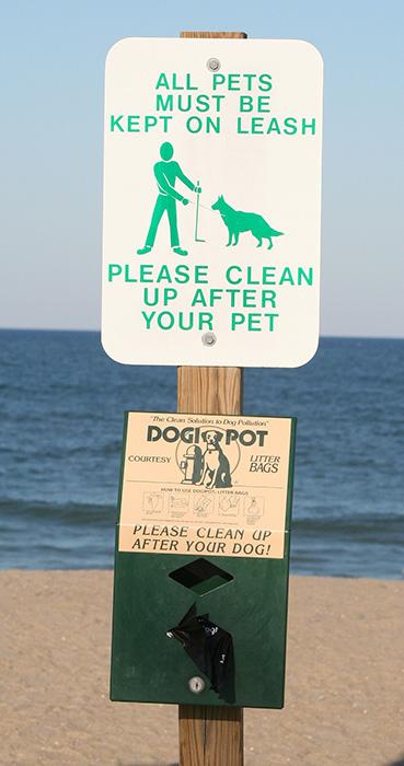 Notice σκυλια