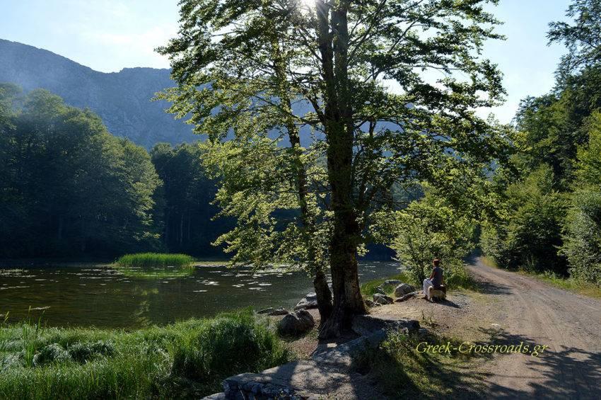 Αρένες λίμνες Γράμμος