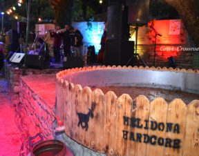 Φεστιβάλ τρύγου Χελιδόνα