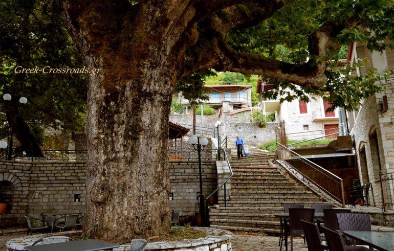Π. Μικρό Χωριό Ευρυτανία πλάτανος πλατεία