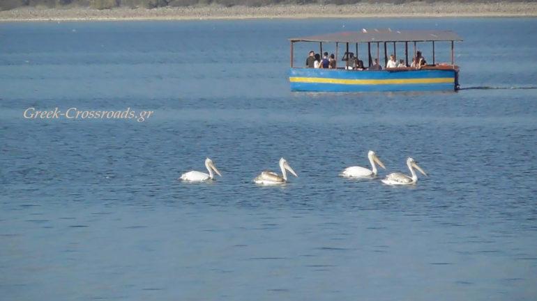 Λίιμνη Κερκίνη βαρκάδα