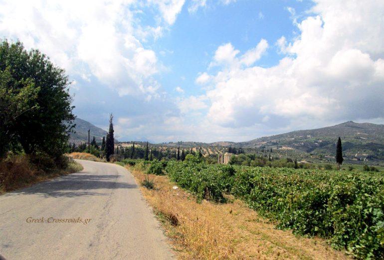 Αρχαία Νεμέα Δρόμοι Κρασιού
