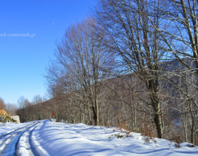Πήλιο Χάνια δρόμος χιόνι
